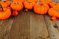 Top border of autumn pumpkins on old wood background Royalty Free Stock Photography