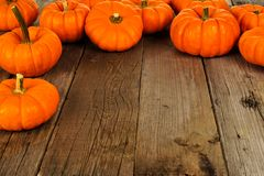 Top border of autumn pumpkins on old wood background Stock Image