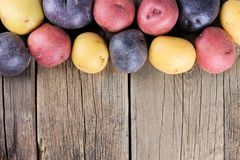 Top border of colorful little potatoes over rustic wood Stock Images