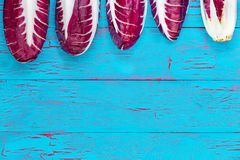 Top border of five fresh radicchio heads. With the last pointing the opposite direction, showing the base over a blue crackle painted wooden background with Royalty Free Stock Images
