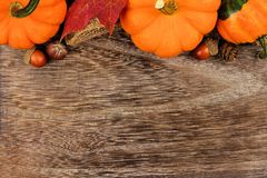 Top border of pumpkins, gourds and leaves against wood. Autumn top border of pumpkins, gourds and leaves against a rustic old wood background Royalty Free Stock Photos