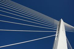 Top bridge pillar joining ropes, blue sky. Success.