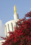 Top of Capital Building in Salem Oregon United States. A Red Maple stands in front of the Capital Building in Salem Stock Photos