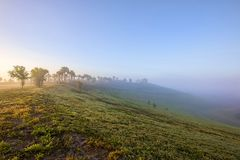 Top Of Celery Fields Hill On A Foggy Morning, South Side Stock Images