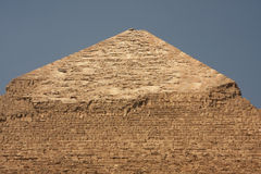 Top of Cheope. The top of Cheope Pyramid on Cairo - Giza Africa Royalty Free Stock Photography