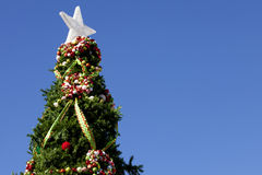 Top of Christmas Tree Royalty Free Stock Photography