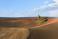On Top of Cinder Cone Royalty Free Stock Photos