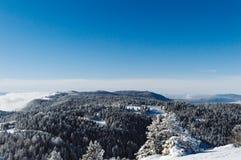 Top de la cadena de montaña cubierta con nieve con los pinos y el cielo azul claro en un día soleado foto de archivo