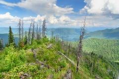 Top de la montaña de Kokuya y opinión sobre el lago Teletskoye República de Altai Rusia Imagen de archivo libre de regalías