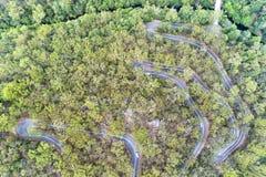 Top de la serpiente del camino de D Berowra abajo Fotos de archivo