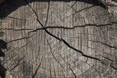 Top de un tocón de madera viejo redondo con las grietas y los anillos de árbol imágenes de archivo libres de regalías