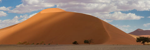 Top del panorama de la duna 45 en Sossusvlei Imágenes de archivo libres de regalías