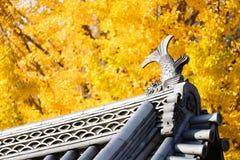 Top del tejado del estilo japonés. Fotos de archivo libres de regalías