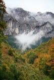 Top die boven de mist toeneemt stock foto's