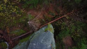 Top down aerial drone image of a forest. Top down aerial drone image of a forest, couple lies on a rock stock video footage