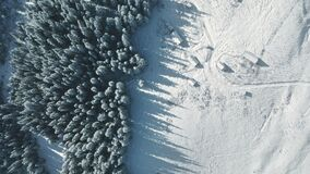 Top down aerial snow mountain pine forest. Nobody nature landscape at winter day. Sun conifer wood