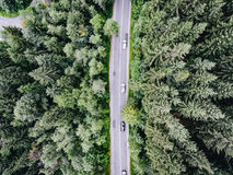 Top down aerial view of cars passing by on road in a forest. Aerial photo shot with a drone Royalty Free Stock Photos