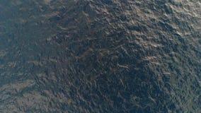 Top-down Ansicht der Meereswellen Seekräuselungen Schattenbild des kauernden Geschäftsmannes Der Hintergrund des Meeres Die Besch stock footage