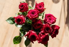 Top-down bouquet of roses in the sun royalty free stock photo