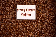 Top Down of coffee beans with freshly roasted coffee sign. Overhead image of freshly roasted coffee beans with a freshly roasted coffee sign on top of the beans Royalty Free Stock Photo