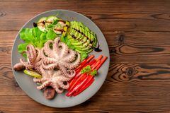 Top down of octopus served with sliced avocado, lettuce, red pep stock images