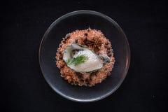 Top Down Shot of Oyster on Himalayan Salt Royalty Free Stock Photos