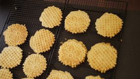 Top Down Shot Placing Fresh Baked Pizzelles on Cooling Sheets. 10303 A handheld overhead shot of a woman placing freshly-baked pizzelles on a cooling sheet stock footage