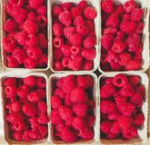 Top down view on boxes of raspberries stock photos
