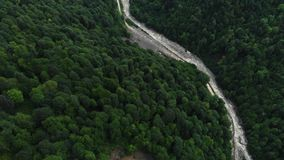 Top down view of fast moving river with rapids surrounded by pine forest. Shot in Sochi. Aerial view of the mountain stock video