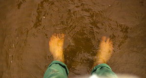Top down view of feet standing in shallow flowing clear water over reddish-brown sandstone. Stock Images