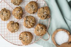 Cooling homemade chocolate chip cookies stock photography