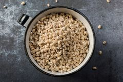 Hulled Barley in a vintage cup. The top down view of organic hulled barley in metal cup Stock Photo