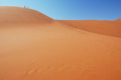 On top of the dune Royalty Free Stock Photo