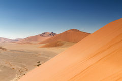 Top of Dune 45 at Sossusvlei. Namibia, Africa Stock Image