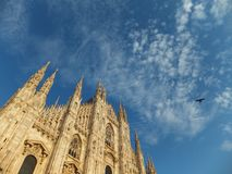 Top of the Duomo Cathedral in Milan against blue sky with a pigeon in flight royalty free stock photography
