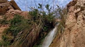 Top of ein gedi waterfall moving downward stock video footage