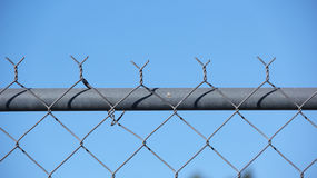 Top Fence. Top of a fence with blue sky at the back stock images