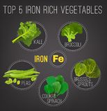 Iron-Rich Foods Poster. Top five iron rich vegetables - kale, broccoli, Brussels sprouts, peas and cooked spinach. Vector illustration isolated on a dark grey vector illustration