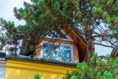 Top floor of a village house against a backdrop of pine branches. Close up royalty free stock photo
