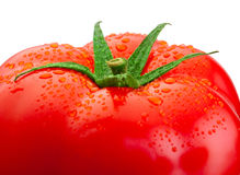 Top fresh tomato close-up and drops of water isolated on white Stock Images