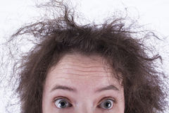 Top Half of Surprised Frizzy Haired Girls Head. A scared/excited woman looking straight into the camera with very frizzy hair stock photography
