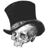 Top Hat Skull Illustration Royalty Free Stock Photo