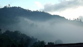 Top of hill with clouds. Top of Hill with trees in the fog creeping. Silhouette of trees in fog in forest stock video