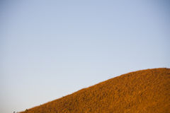 Top hill Landscape with dry fields in the Morning Stock Images