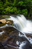 The top of Hooker Falls on the Little River in Dupont State Fore Stock Photography
