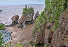Top of Hopewell Rocks. Mountain top view of Hopewell Rocks at Bay of Fundy in New-Brunswick during low tide Stock Photos