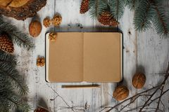 Top image of open book with vintage blank pages and Christmas decorations on a wooden table. New concept. Nuts and christmas trees. Top image of open book with Royalty Free Stock Image