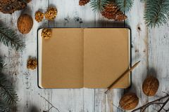 Top image of open book with vintage blank pages and Christmas decorations on a wooden table. New concept. Nuts and christmas trees. Top image of open book with Royalty Free Stock Photography