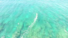 Top 4k aerial drone cam of professional windsurfer gliding in calm waves of turquoise blue ocean water Hawaiian seascape. Top  aerial drone view of windsurfer stock video footage