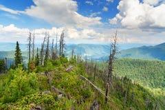 Top of Kokuya Mountain and view on Teletskoye Lake. Altai Republic. Russia Stock Photos